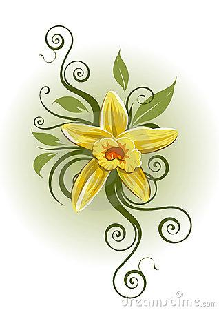 Vanilla Stock Illustrations.