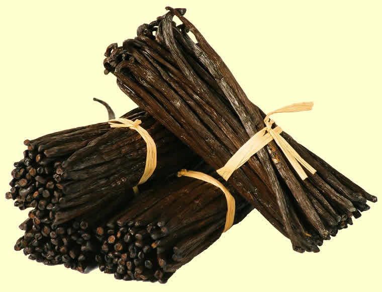 Buy Gourmet Vanilla Beans from Papua New Guinea PNG.