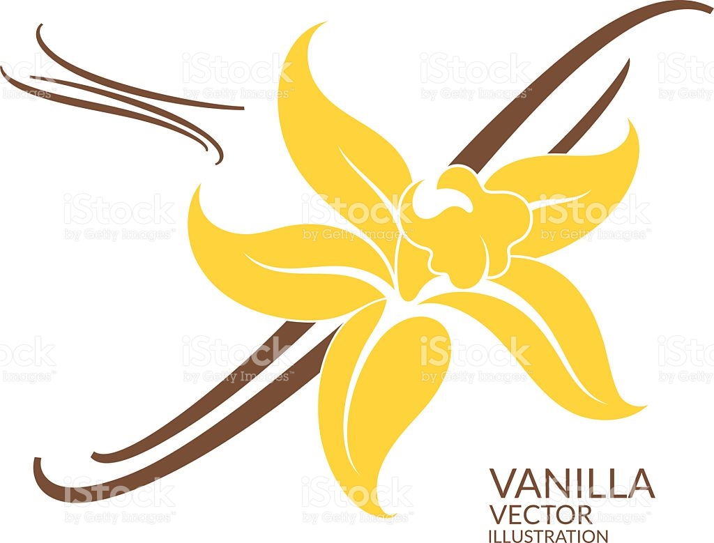 Vanilla Clip Art, Vector Images & Illustrations.