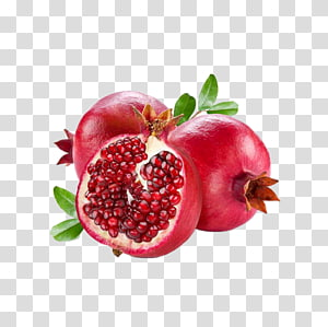 Vanilla pomegranate clipart clipart images gallery for free.