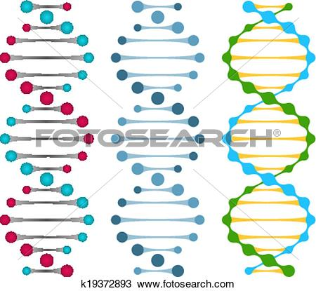 Clipart of Three variants of double strand DNA molecules k19372893.