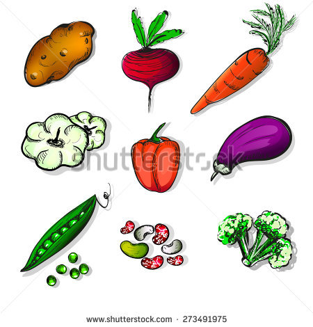 Vector Vegetables Set Stock Vector 33000640.