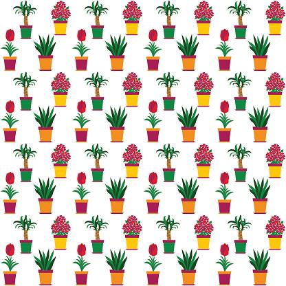 Variegated Snake Plant Clip Art, Vector Images & Illustrations.