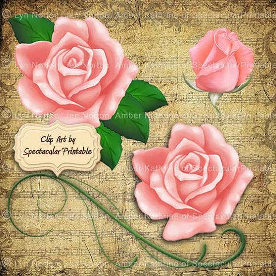 Items similar to Light Pink Rose Clip Art RoseBud full Roses with.