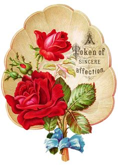 Varigated roses clipart #4