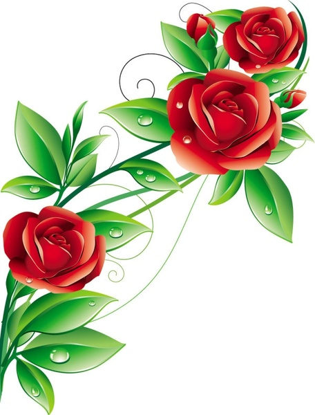 Varigated roses clipart #2