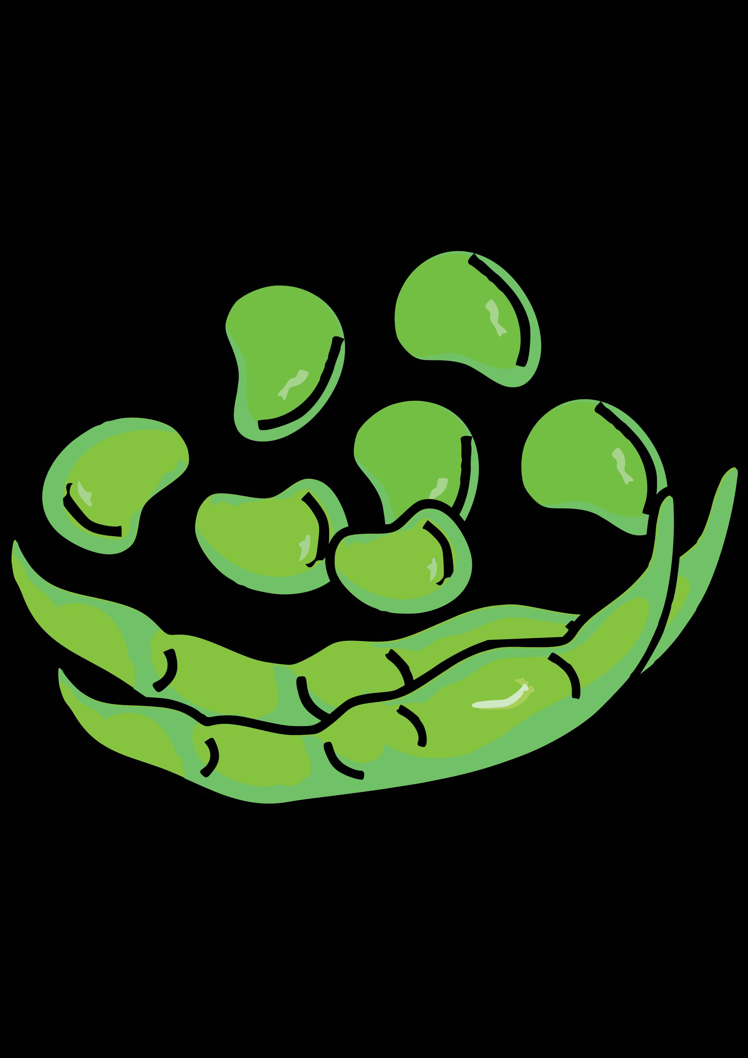 Bean clipart broad bean, Bean broad bean Transparent FREE.