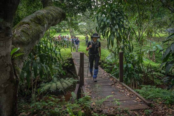Pristine Paradise Preserved in PNG\'s National Parks.
