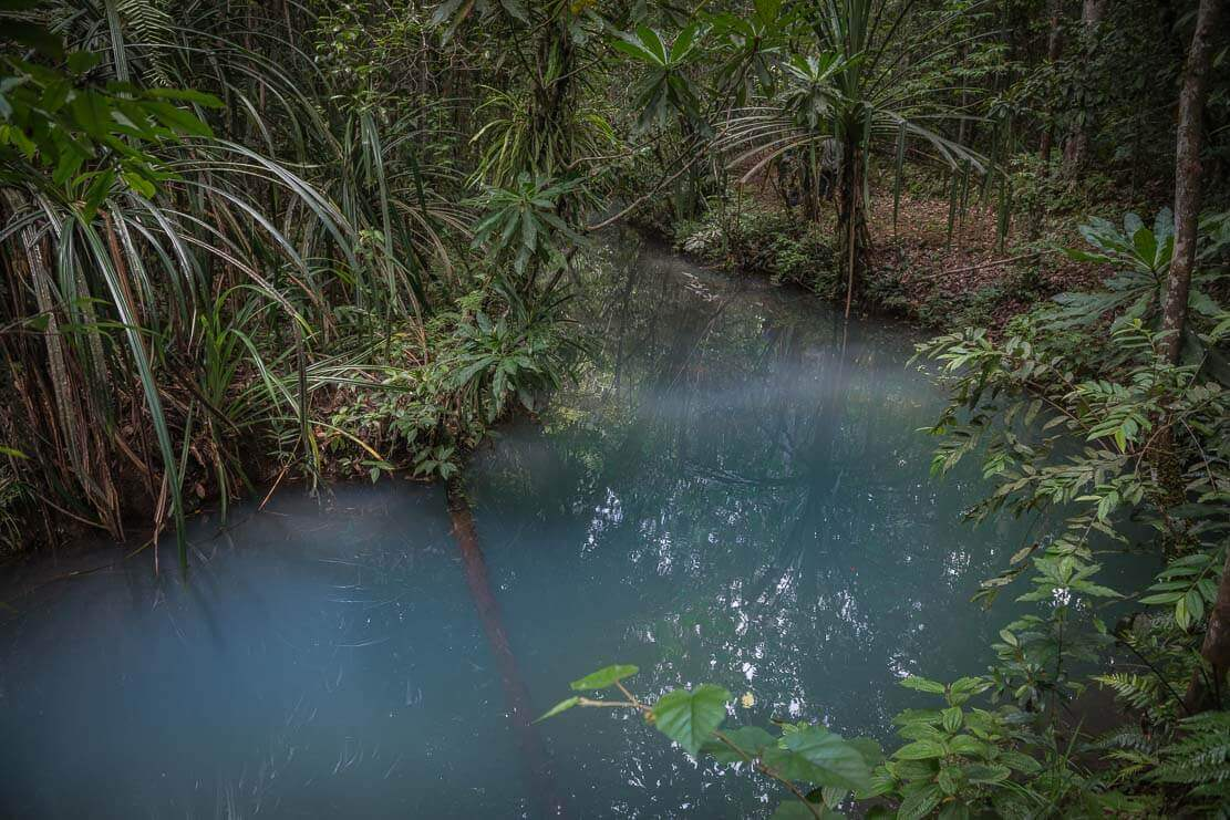 Bushwalking in PNG: Varirata National Park ∞ ANYWAYINAWAY.