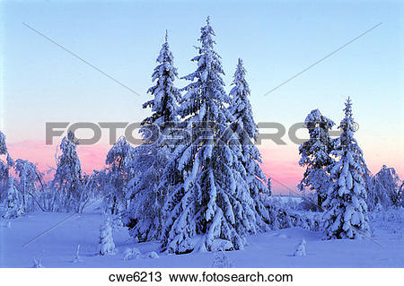 Stock Photo of Frozen winter landscapes of Dalarna and Varmland in.