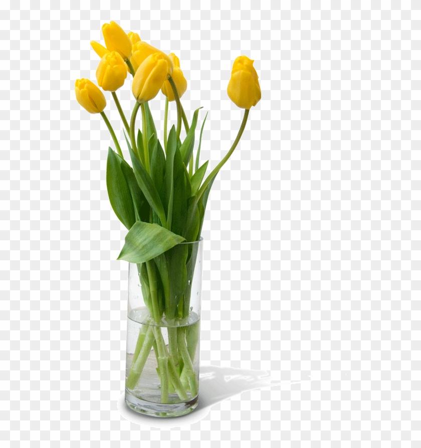 Flower Vase Png Free Download.
