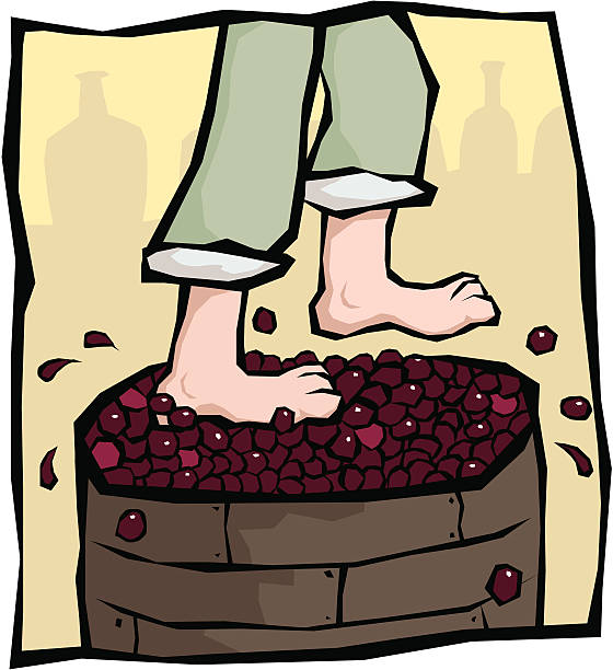 Wine Vats Cartoon Clip Art, Vector Images & Illustrations.