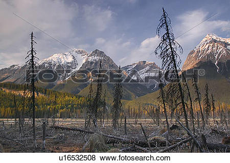 Pictures of Mt. Vaux and Chancellor Peak, Yoho National Park, BC.