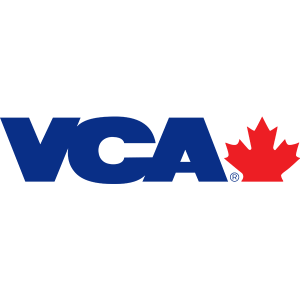 Vca logo png 1 » PNG Image.
