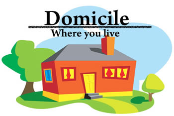 Difference between Native and Domicile.