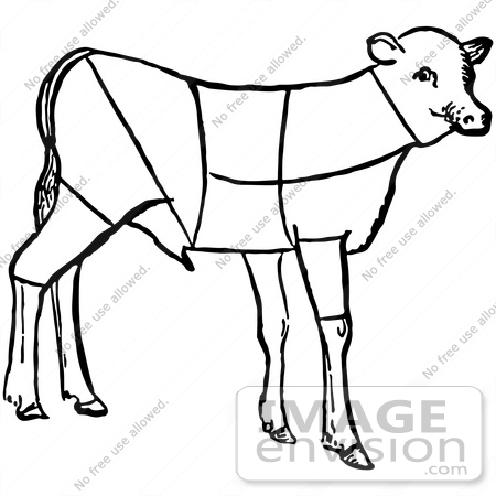 Clipart Of A Lamb Showing Cuts Of Veal In Black And White.