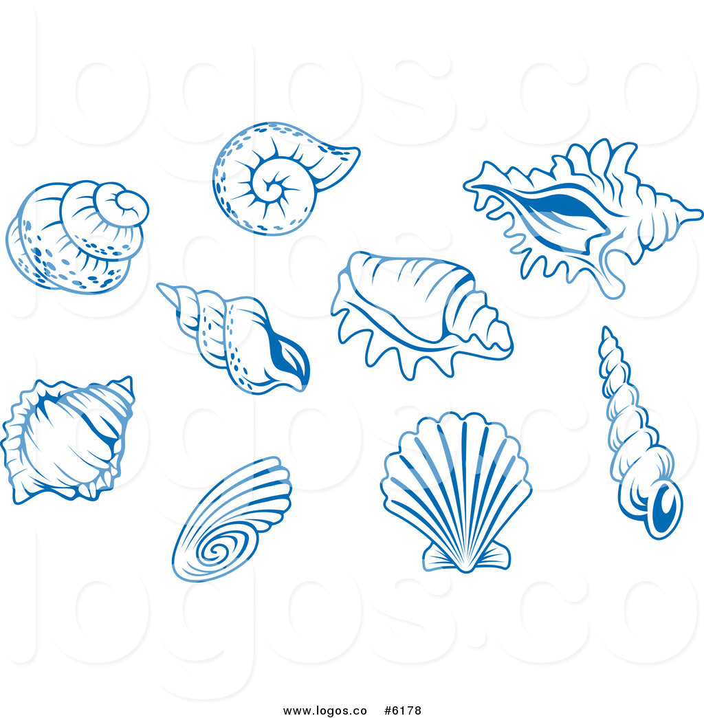 Seashell Vector Free at GetDrawings.com.