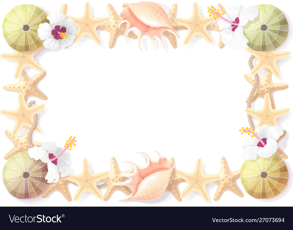 Tropical seashell frame clipart.