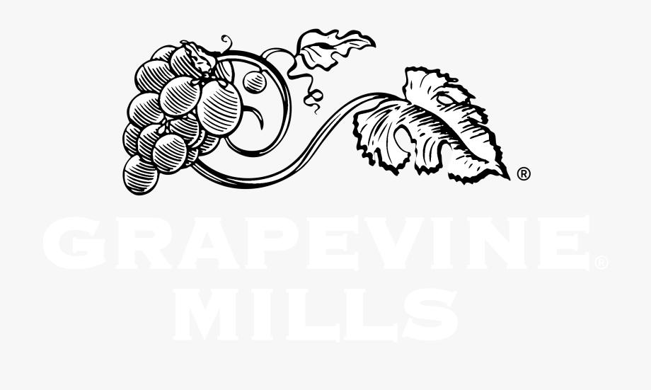 Grapevine Vector Black And White.