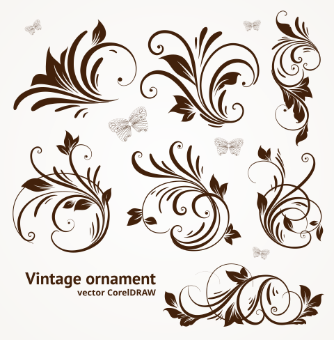 Free Download Vector Vintage Ornament Format CorelDRAW cdr.
