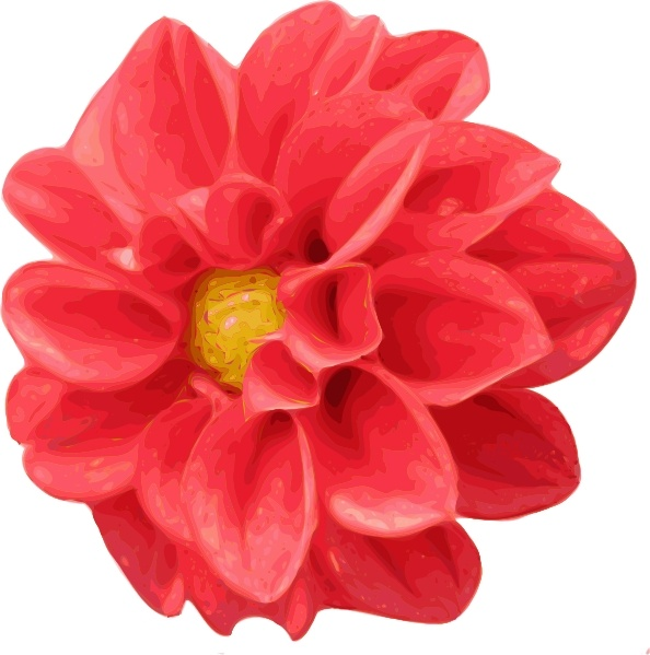 Dahlia clip art Free vector in Open office drawing svg.
