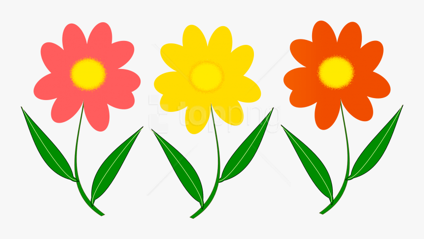 Flowers Vector Png.
