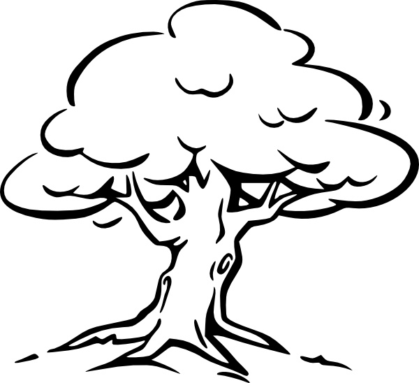 Tree Outline clip art Free vector in Open office drawing svg.