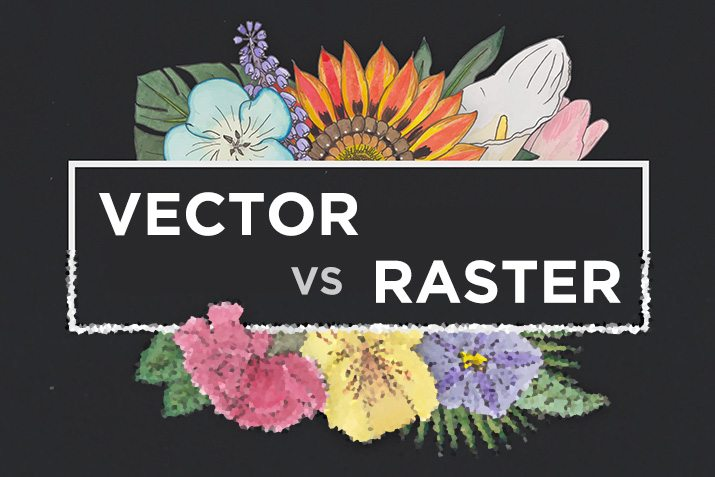 Vector vs. Raster: What Do I Use?.