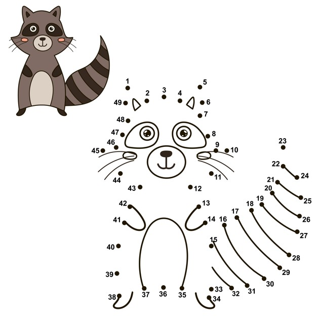 Connect the dots to draw the cute raccoon Vector.