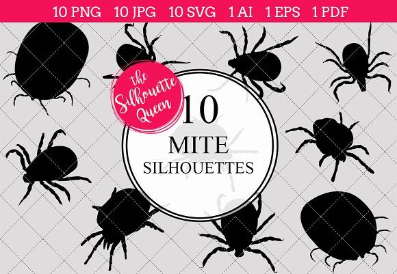 Mite Silhouette Vector Graphics by #vector, #silhouette.