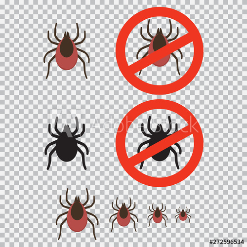 Mite and stop sign vector set isolated on transparent.