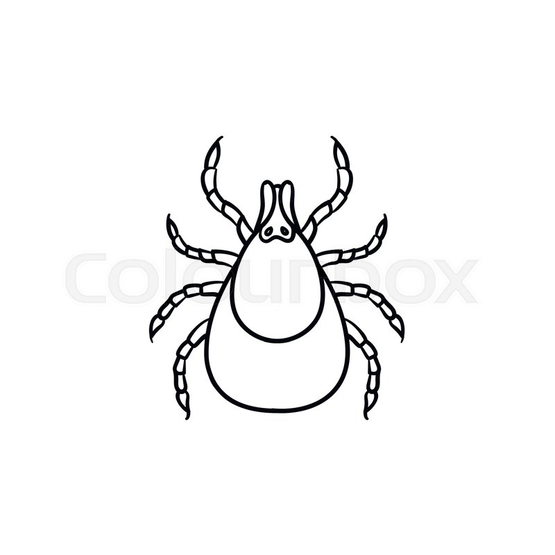 Mite hand drawn outline doodle icon..