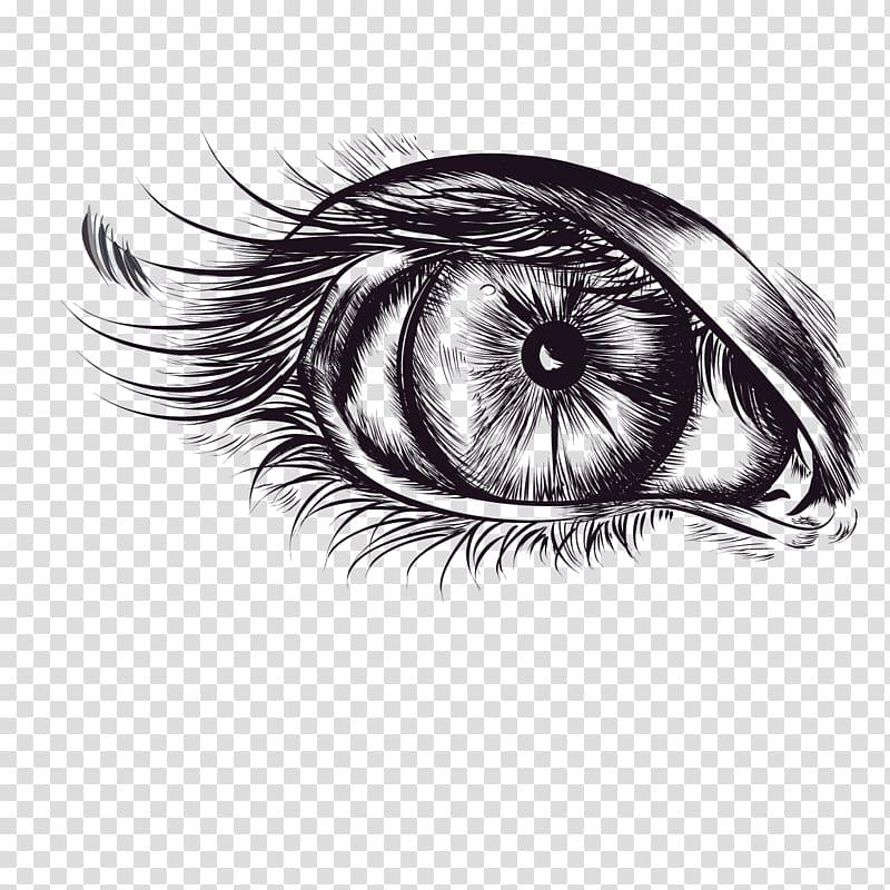 Eyelash Computer file, eyelashes transparent background PNG.