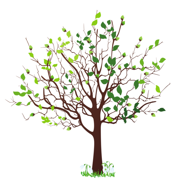 Leaves clipart family tree, Leaves family tree Transparent.