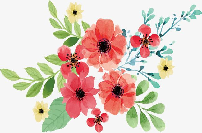Pink Watercolor Flowers, Vector Png, Watercolor Plants.