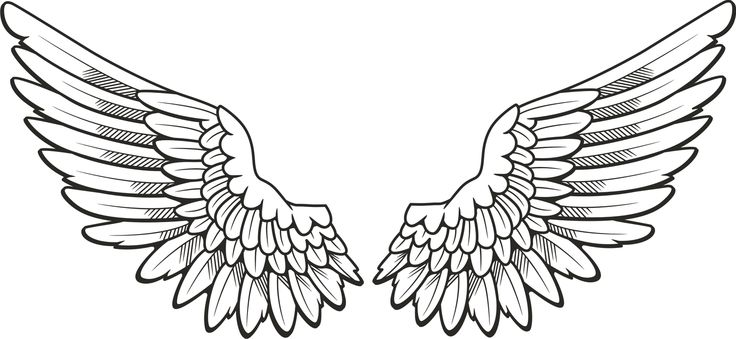 1813 Angel Wings free clipart.