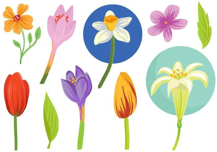 Free Spring Flowers Vectors.