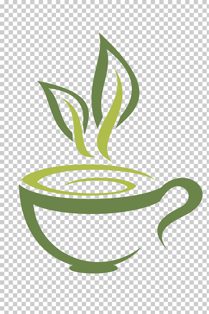 Green tea Coffee White tea Teacup, Fuding white tea tea.