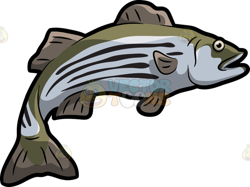 A striped bass cartoon clipart vector toons.