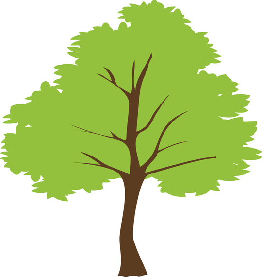 Tree PNG Vector Transparent Tree Vector.PNG Images..