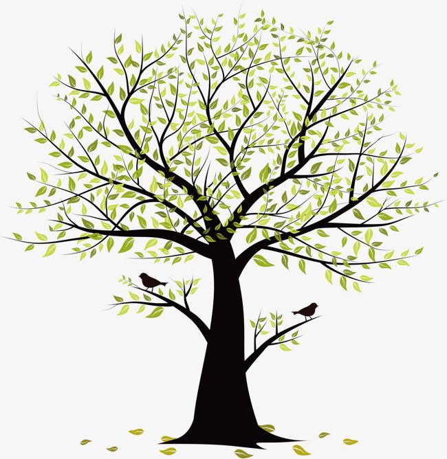 Small Tree Vector Birds, Tree Clipart, Birds, Trees PNG and.