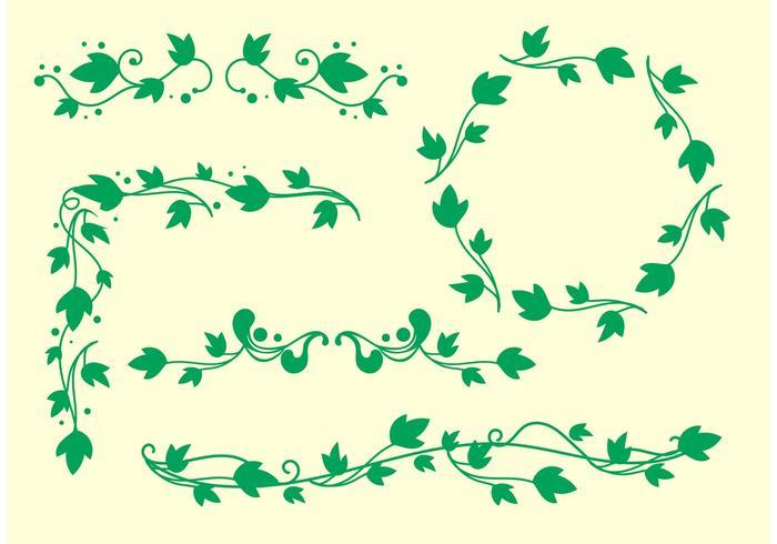 Simple Ivy Vine Vectors.