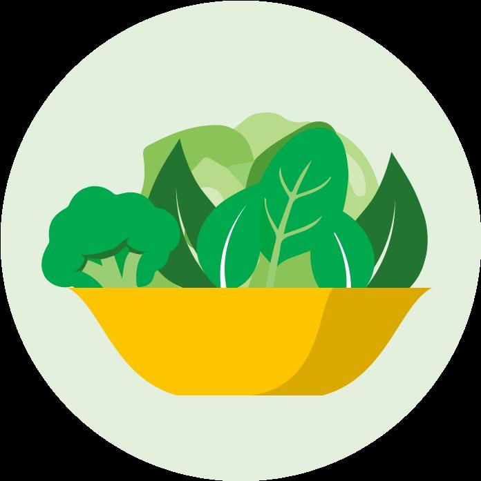 Clipart Vegetables Leafy Vegetable.