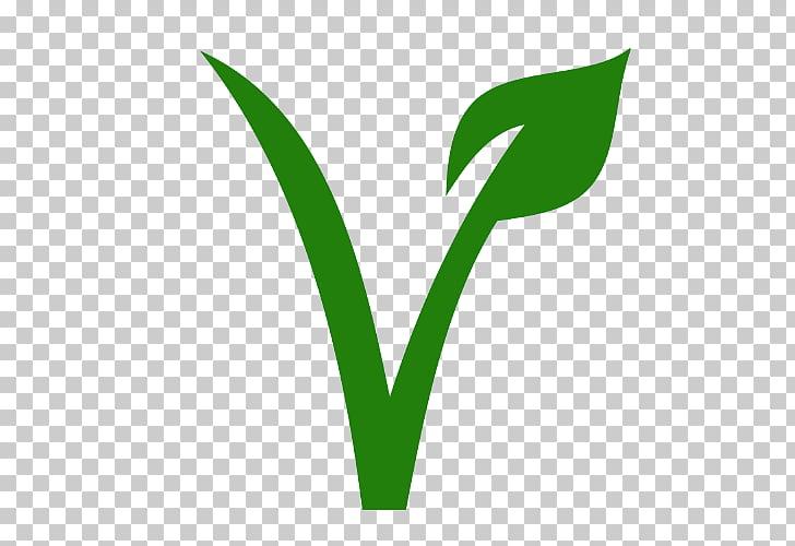 Vegetarian cuisine Veggie burger Veganism Vegetarianism.