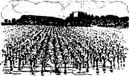 Agricultura Vegetação Clip Art.