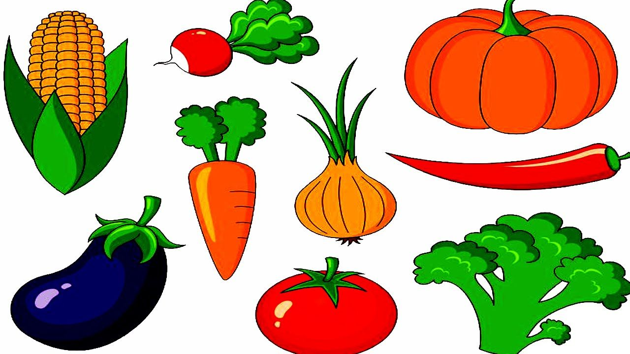 Vegetable with their Names.