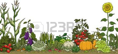 23,008 Vegetable Garden Cliparts, Stock Vector And Royalty Free.