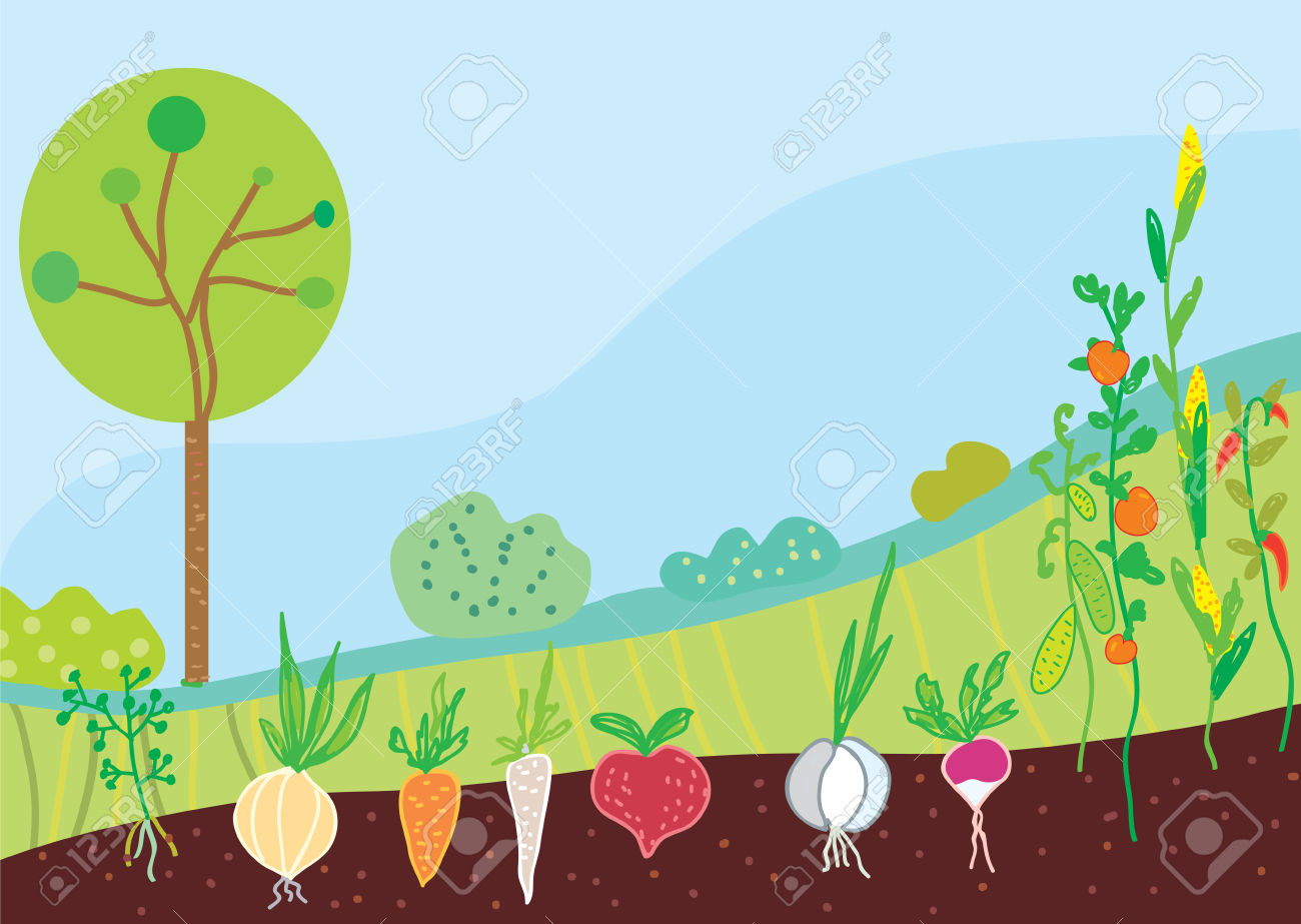 Garden In Spring With Vegetables Background Royalty Free Cliparts.