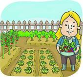 Vegetable garden Clip Art Illustrations. 12,900 vegetable garden.