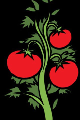 Vegetable Garden Clipart.